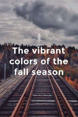 The vibrant colors of the fall season
