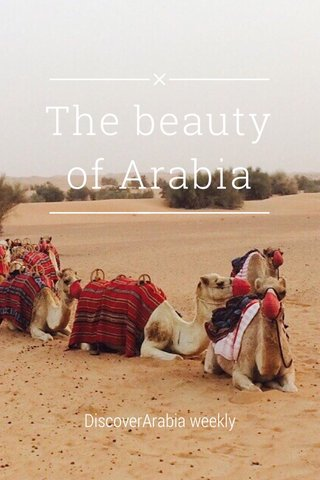 The beauty of Arabia DiscoverArabia weekly