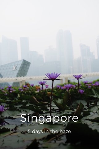 Singapore 5 days in the haze