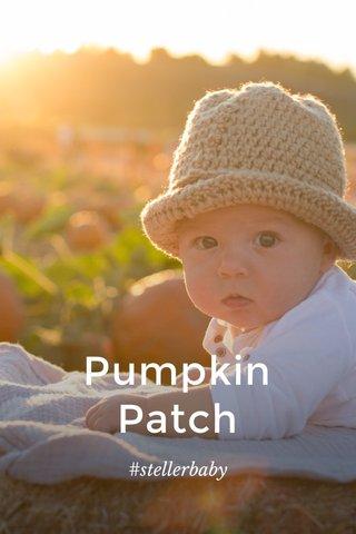 Pumpkin Patch #stellerbaby
