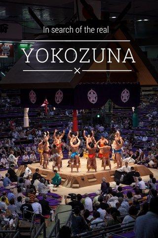 YOKOZUNA In search of the real