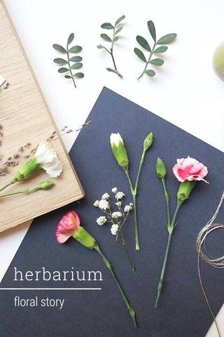 herbarium floral story