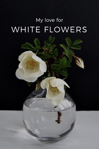 WHITE FLOWERS My love for
