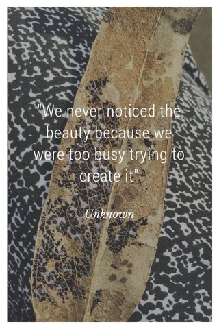 """""""We never noticed the beauty because we were too busy trying to create it"""" Unknown"""