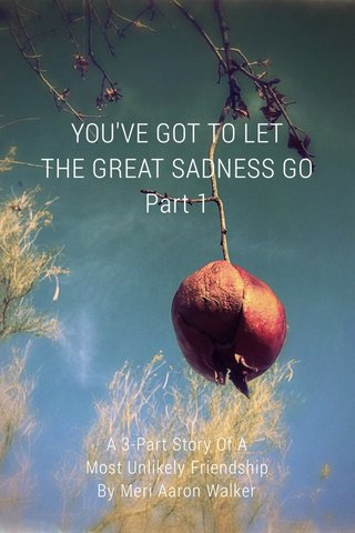 YOU'VE GOT TO LET THE GREAT SADNESS GO Part 1 A 3-Part Story Of A Most Unlikely Friendship By Meri Aaron Walker