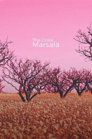 Marsala The Color
