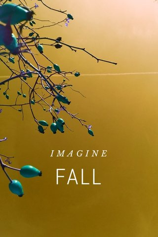 FALL IMAGINE