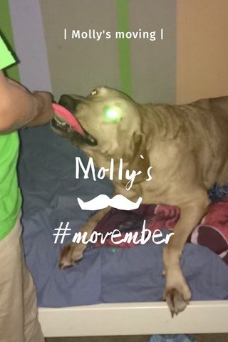 Molly's #movember | Molly's moving |
