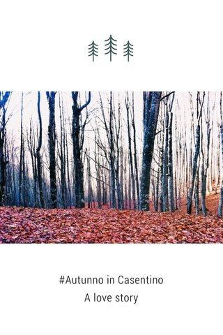 #Autunno in Casentino A love story