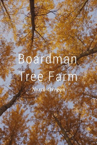 Boardman Tree Farm North Oregon