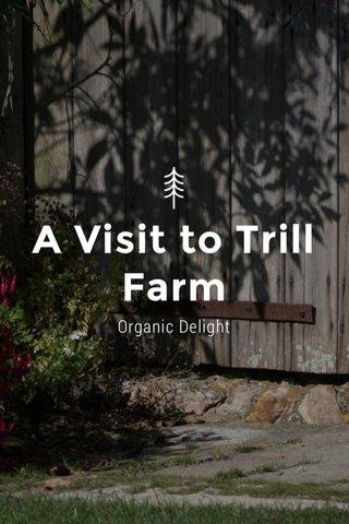 A Visit to Trill Farm Organic Delight