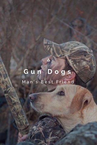 Gun Dogs Man's Best Friend
