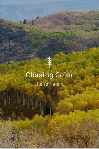Chasing Color Utah's Nature
