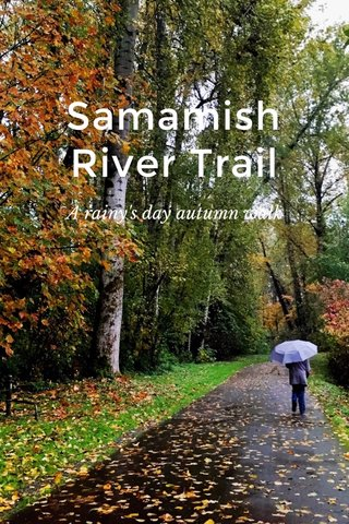 Samamish River Trail A rainy's day autumn walk