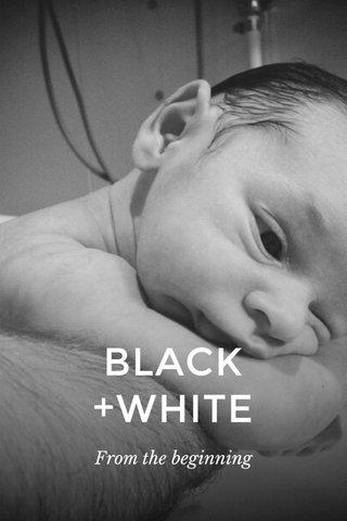 BLACK+WHITE From the beginning