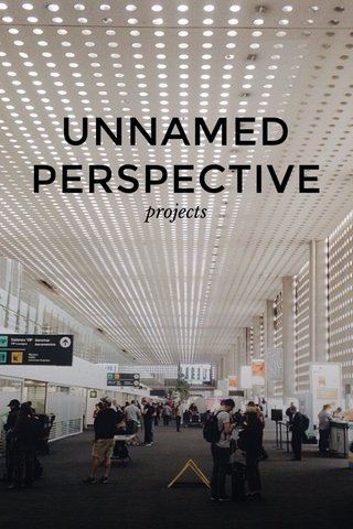 UNNAMED PERSPECTIVE projects