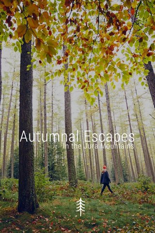 Autumnal Escapes In the Jura Mountains
