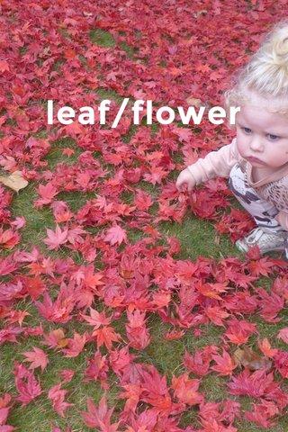 leaf/flower