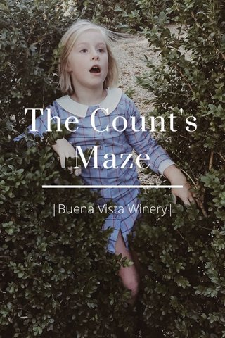 The Count's Maze |Buena Vista Winery|