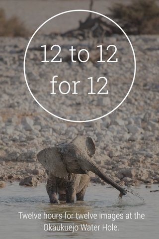 12 to 12 for 12 Twelve hours for twelve images at the Okaukuejo Water Hole.