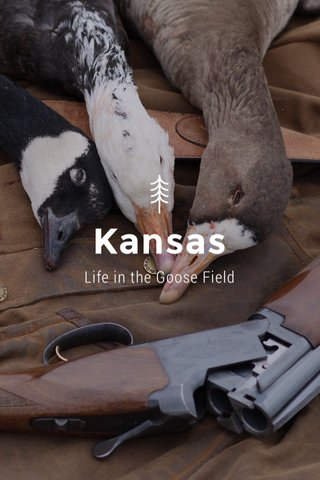 Kansas Life in the Goose Field