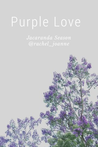 Purple Love Jacaranda Season @rachel_joanne