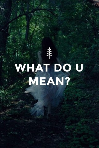 WHAT DO U MEAN?