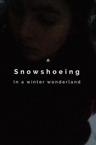 Snowshoeing In a winter wonderland