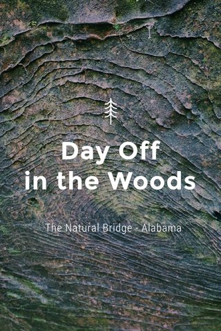 Day Off in the Woods The Natural Bridge - Alabama