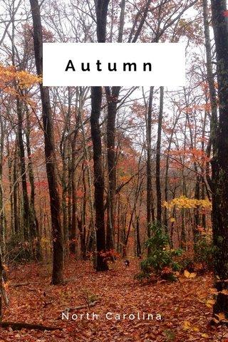 Autumn North Carolina