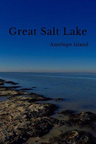 Great Salt Lake Antelope Island