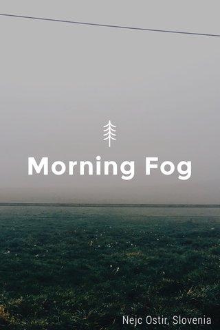 Morning Fog Nejc Ostir, Slovenia