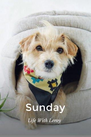 Sunday Life With Leroy