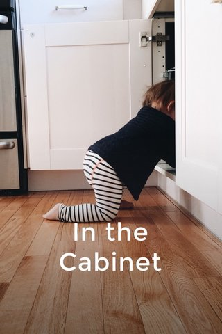 In the Cabinet