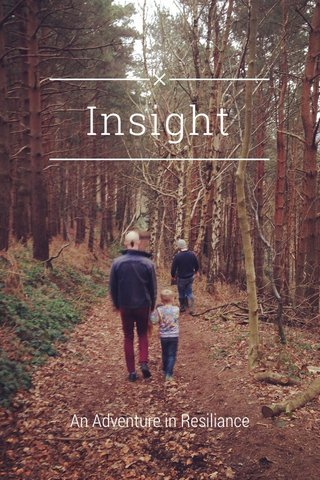 Insight An Adventure in Resiliance
