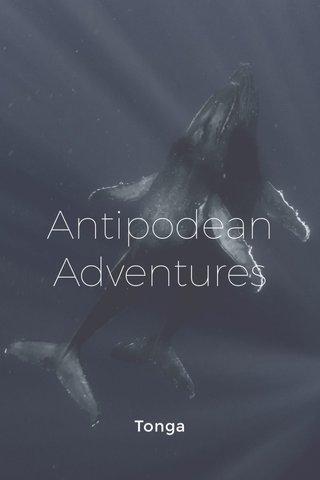 Antipodean Adventures Tonga