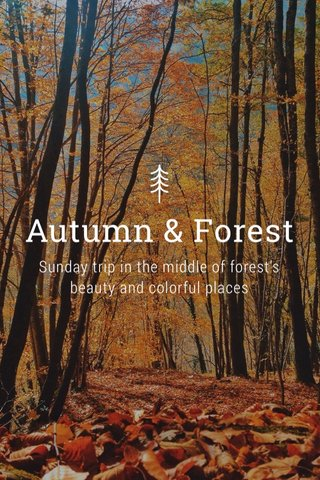 Autumn & Forest Sunday trip in the middle of forest's beauty and colorful places
