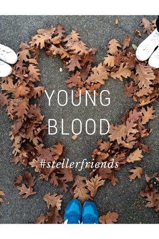 YOUNG BLOOD #stellerfriends