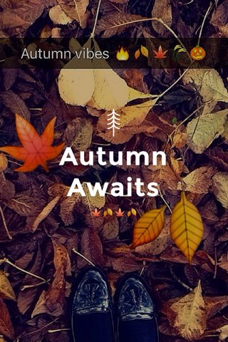 Autumn Awaits 🍁🍂🍁🍂