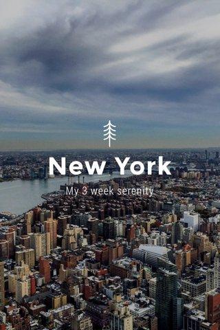 New York My 3 week serenity