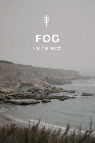 FOG and the beach