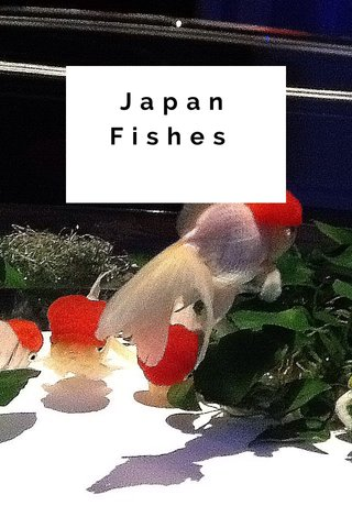 Japan Fishes