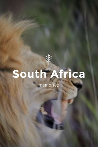 South Africa memories