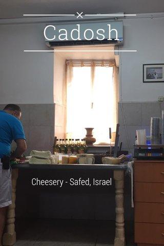 Cadosh Cheesery - Safed, Israel