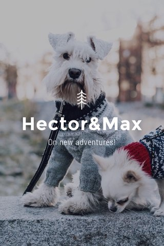 Hector&Max On new adventures!