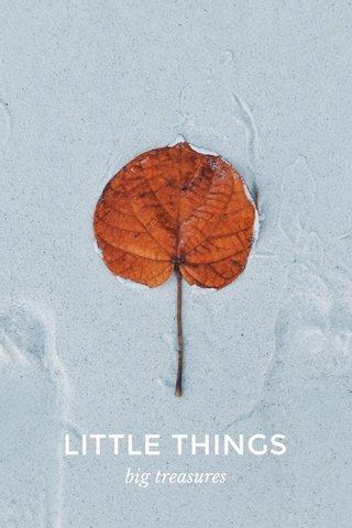 LITTLE THINGS big treasures
