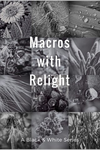 Macros with Relight A Black & White Series