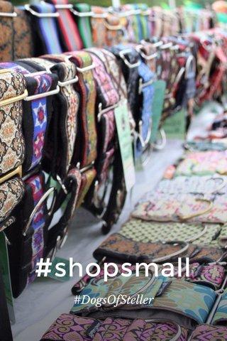 #shopsmall #DogsOfSteller
