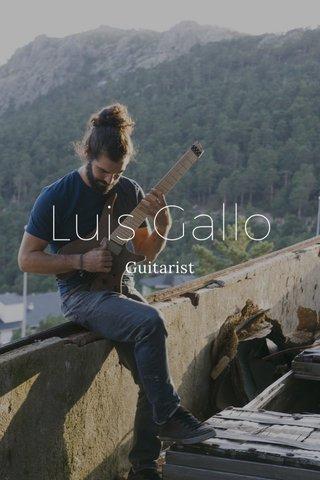 Luis Gallo Guitarist