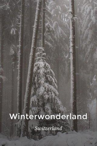 Winterwonderland Switzerland